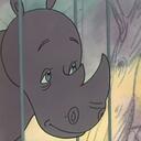 Подружитесь с носорогом